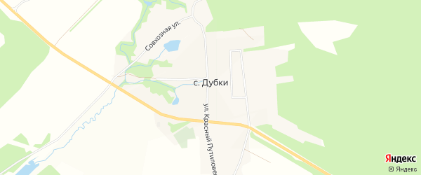 Карта села Дубки в Владимирской области с улицами и номерами домов