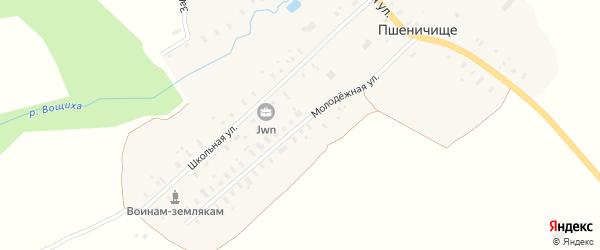 Молодежная улица на карте села Пшеничища Ярославская области с номерами домов