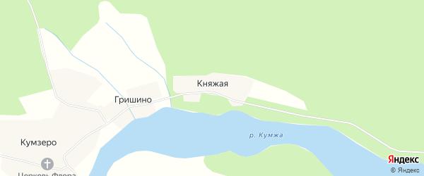 Карта Княжой деревни в Вологодской области с улицами и номерами домов