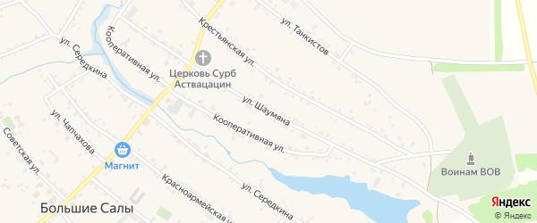 Улица Шаумяна на карте села Большие Салы Ростовской области с номерами домов