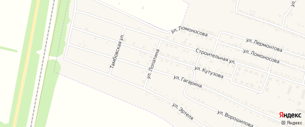 Улица Лопатина на карте Усмани с номерами домов
