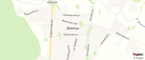 Карта села Девицы в Липецкой области с улицами и номерами домов