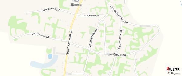 Улица Мичурина на карте аула Джамбичи Адыгеи с номерами домов