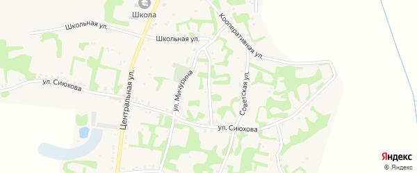 Улица Братьев Тлишевых на карте аула Джамбичи Адыгеи с номерами домов