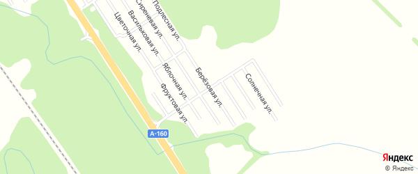Березовая улица на карте Ромашки с номерами домов