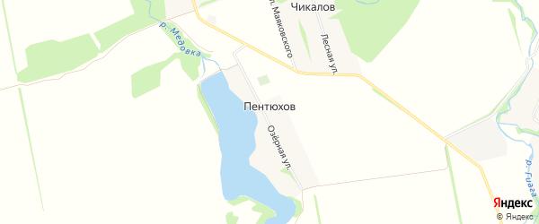 Карта хутора Пентюхова в Адыгее с улицами и номерами домов
