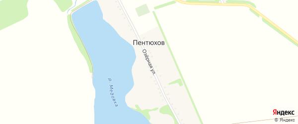 Озерная улица на карте хутора Пентюхова Адыгеи с номерами домов