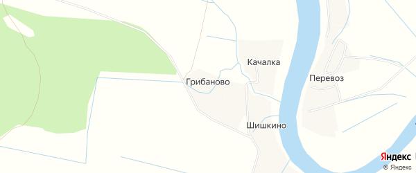 Карта деревни Грибаново в Вологодской области с улицами и номерами домов