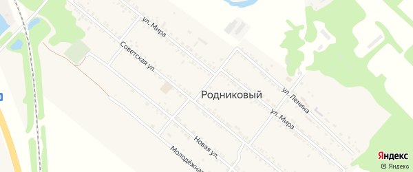 Северный переулок на карте Родникового поселка с номерами домов