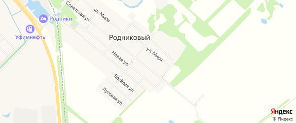 Карта Родникового поселка города Майкопа в Адыгее с улицами и номерами домов