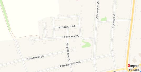 Полевая улица в Ряжске с номерами домов на карте. Спутник и схема онлайн