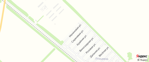 Малиновая улица на карте Птицевода с номерами домов