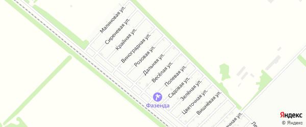 Дальняя улица на карте Птицевода с номерами домов