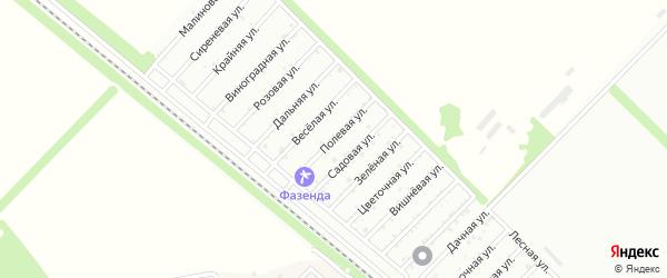 Полевая улица на карте Птицевода с номерами домов