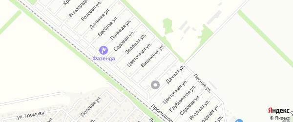 Вишневая улица на карте Птицевода с номерами домов