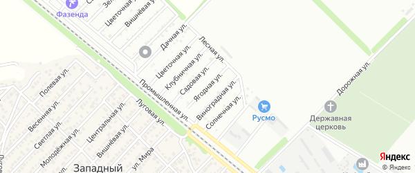 Ягодная улица на карте Звезды с номерами домов