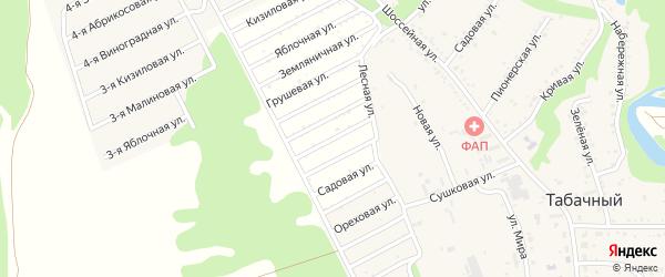 Виноградная 3-я улица на карте Табачного поселка Адыгеи с номерами домов