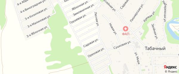 Коллективная улица на карте Табачного поселка Адыгеи с номерами домов