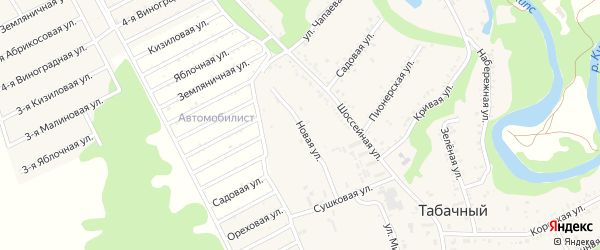 Лесная улица на карте Табачного поселка Адыгеи с номерами домов