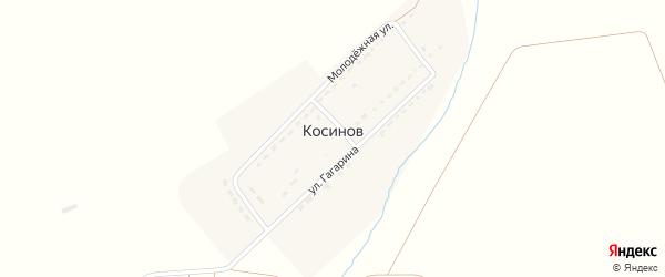 Молодежная улица на карте хутора Косинова с номерами домов