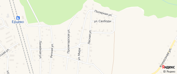 Лесная улица на карте поселка Ерцево с номерами домов