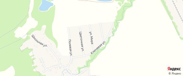 Улица Мира на карте Цветочного поселка Адыгеи с номерами домов