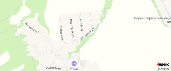 Ключевая улица на карте Цветочного поселка Адыгеи с номерами домов