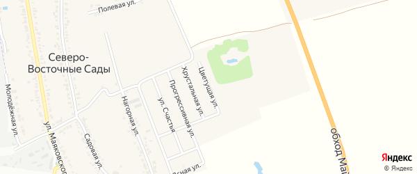 Цветущая улица на карте хутора Северо-Восточные Садов Адыгеи с номерами домов