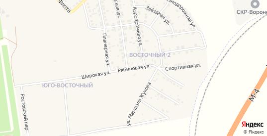 Рябиновая улица в Павловске с номерами домов на карте. Спутник и схема онлайн