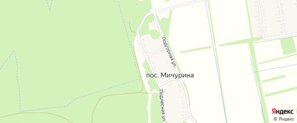 Подлесная улица на карте поселка Мичурина Адыгеи с номерами домов