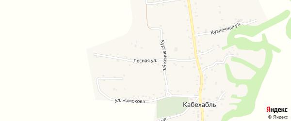 Лесная улица на карте аула Кабехабля Адыгеи с номерами домов
