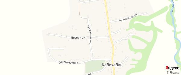 Курганная улица на карте аула Кабехабля Адыгеи с номерами домов