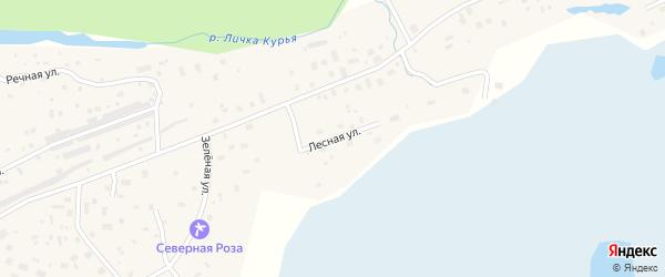 Лесная улица на карте деревни Рикасихи Архангельской области с номерами домов