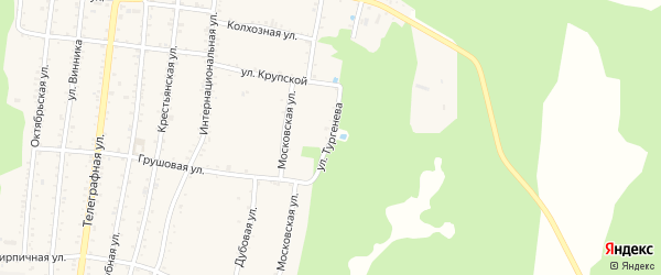 Улица Тургенева на карте Абадзехской станицы Адыгеи с номерами домов
