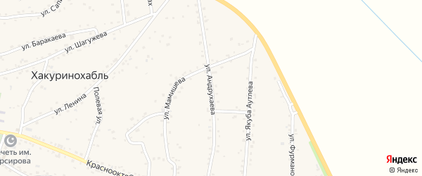 Улица им Андрухаева на карте аула Хакуринохабля Адыгеи с номерами домов