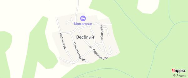 Партизанская улица на карте хутора Веселый (Каменномостский птт) Адыгеи с номерами домов