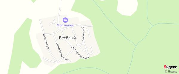 Дачная улица на карте хутора Веселый (Каменномостский птт) Адыгеи с номерами домов