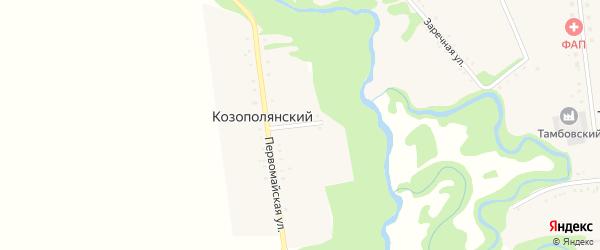Лесная улица на карте Козополянского хутора Адыгеи с номерами домов
