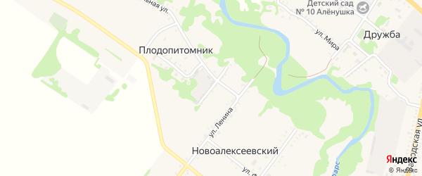 Интернациональный переулок на карте Новоалексеевского хутора Адыгеи с номерами домов