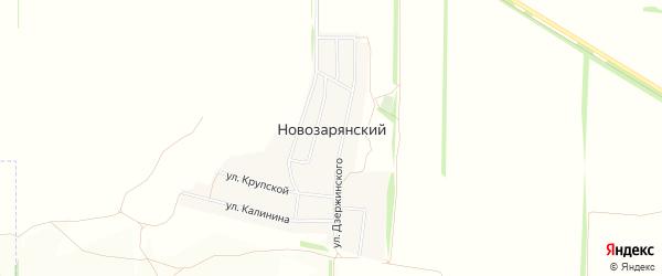Карта Новозарянского поселка в Ростовской области с улицами и номерами домов
