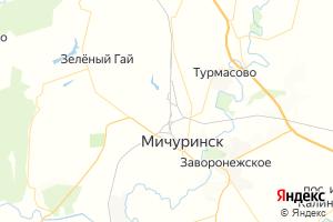 Карта г. Мичуринск Тамбовская область