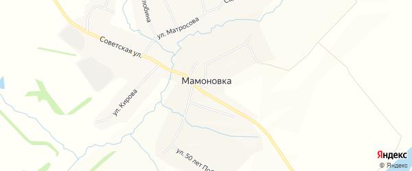Карта села Мамоновки в Воронежской области с улицами и номерами домов