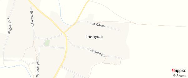 Карта села Гнилуши в Воронежской области с улицами и номерами домов