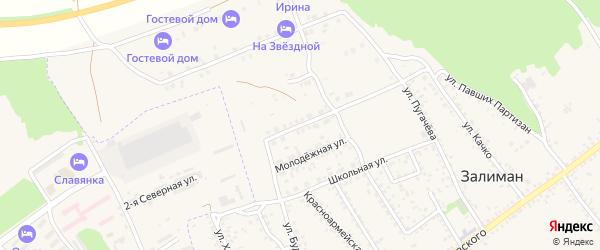 Улица Космонавтов на карте села Залимана Воронежской области с номерами домов