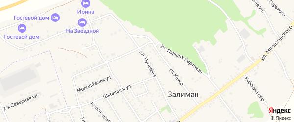 Улица Пугачева на карте села Залимана Воронежской области с номерами домов