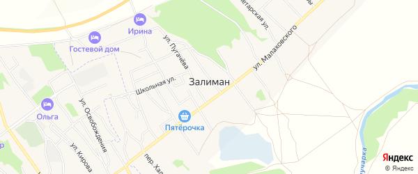 Карта села Залимана в Воронежской области с улицами и номерами домов