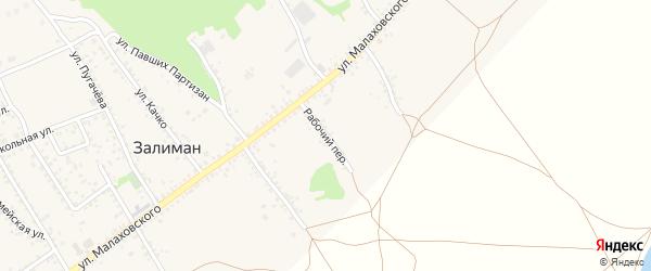 Рабочий переулок на карте села Залимана Воронежской области с номерами домов
