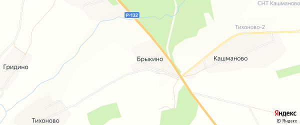 Карта деревни Брыкино в Владимирской области с улицами и номерами домов
