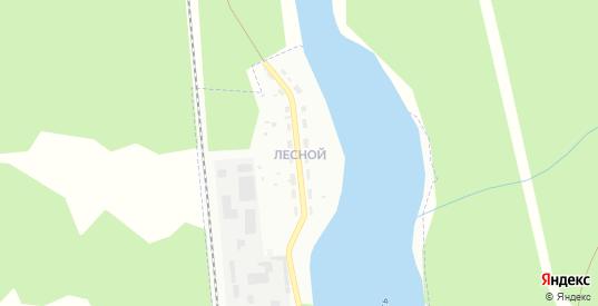 Лесной поселок в Гусе-Хрустальном с номерами домов на карте. Спутник и схема онлайн