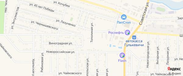 Тополиная улица на карте Гулькевичей с номерами домов